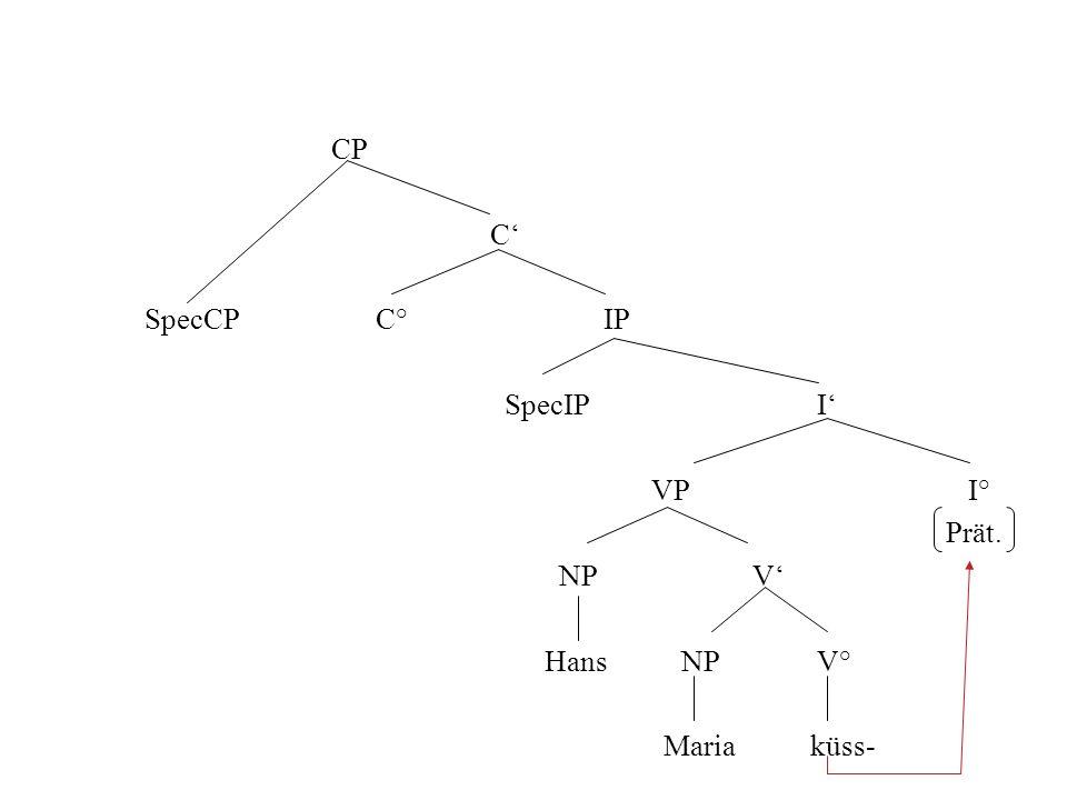 CP C' SpecCP C° IP. SpecIP I' VP I°