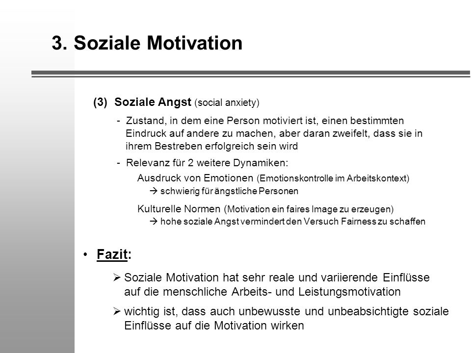 3. Soziale Motivation Fazit: (3) Soziale Angst (social anxiety)