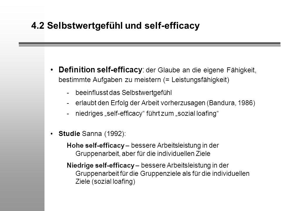 4.2 Selbstwertgefühl und self-efficacy