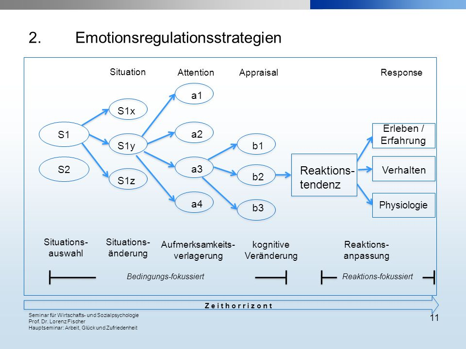 2. Emotionsregulationsstrategien