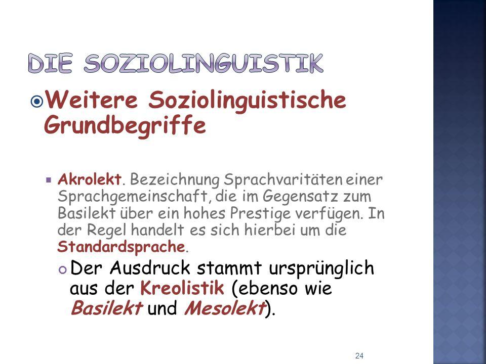 Die Soziolinguistik Weitere Soziolinguistische Grundbegriffe