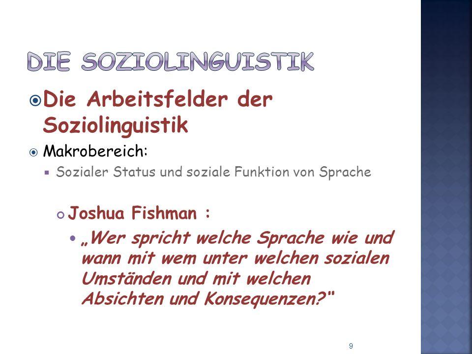 Die Soziolinguistik Die Arbeitsfelder der Soziolinguistik