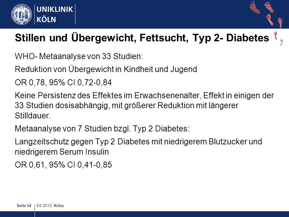 Stillen und Übergewicht, Fettsucht, Typ 2- Diabetes