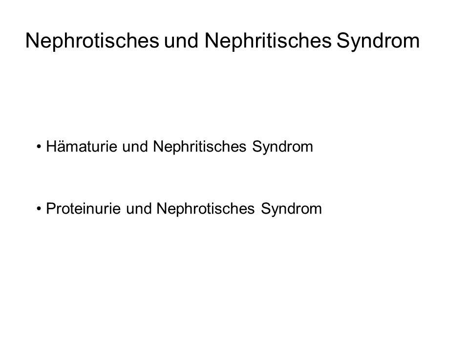 Nephrotisches und Nephritisches Syndrom