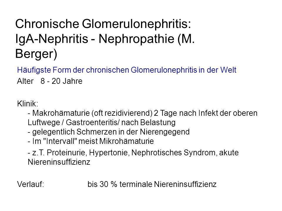 Chronische Glomerulonephritis: