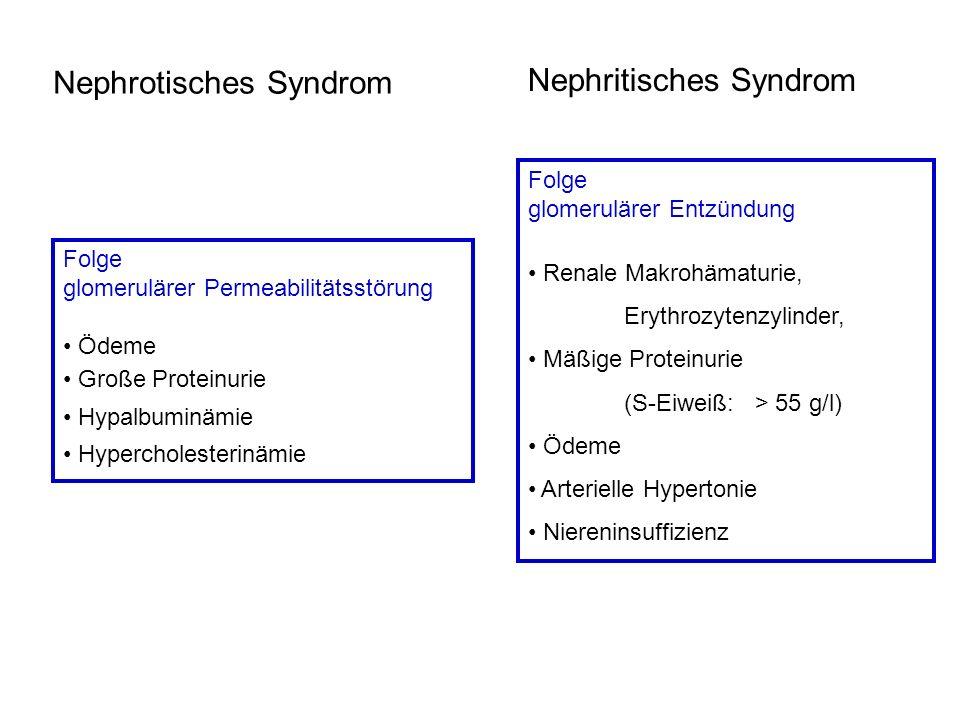 Nephrotisches Syndrom Nephritisches Syndrom