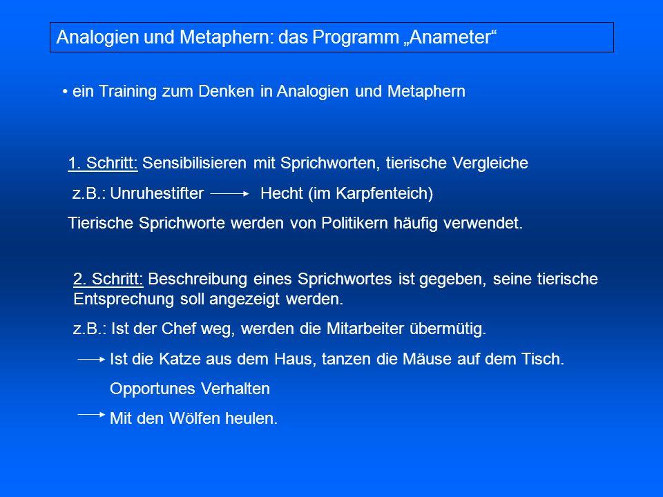"""Analogien und Metaphern: das Programm """"Anameter"""