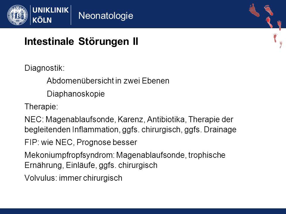 Intestinale Störungen II