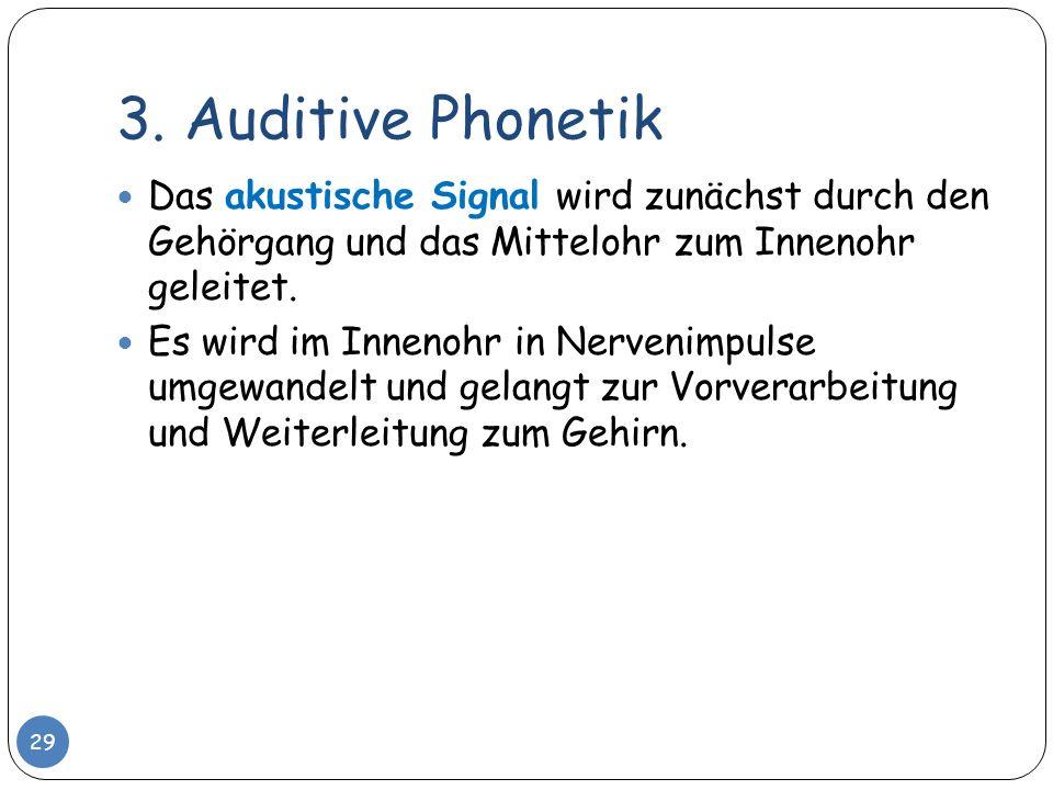 3. Auditive Phonetik Das akustische Signal wird zunächst durch den Gehörgang und das Mittelohr zum Innenohr geleitet.