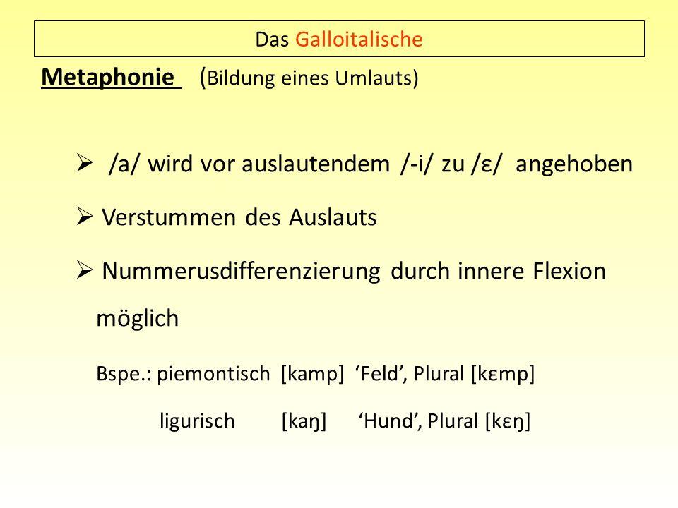 Metaphonie (Bildung eines Umlauts)