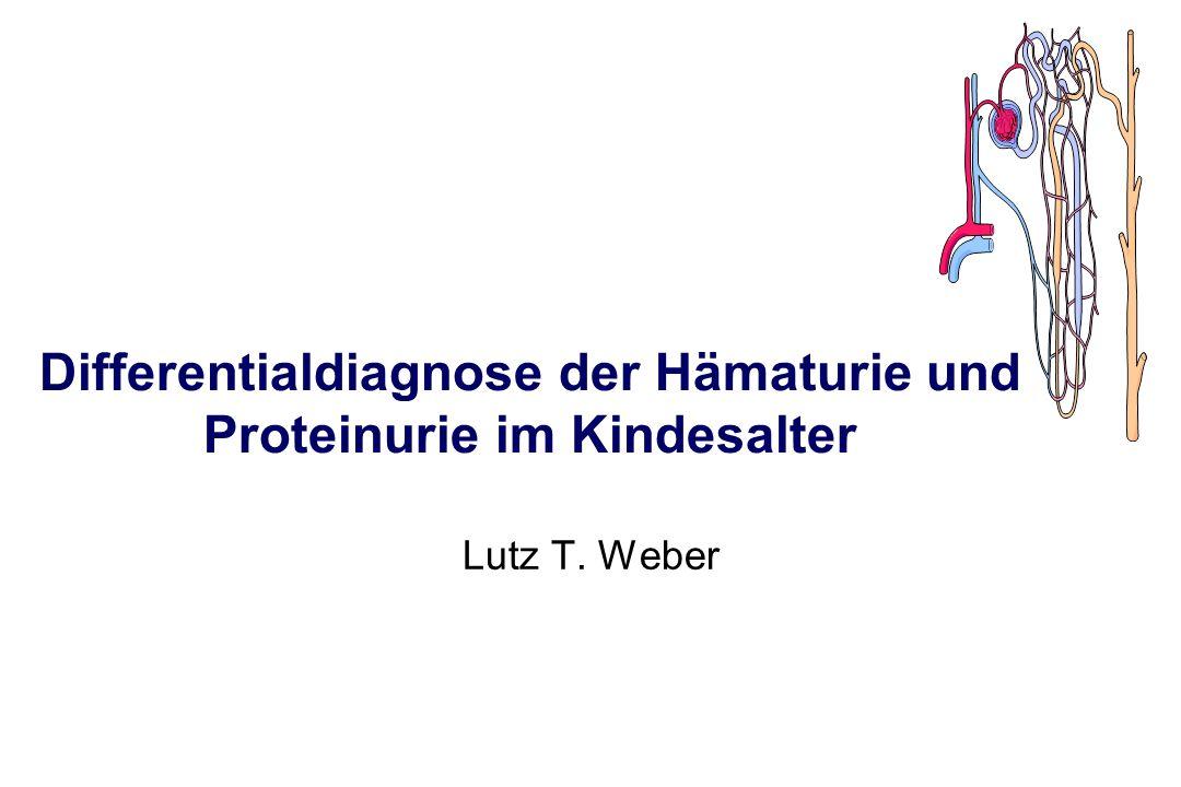 Differentialdiagnose der Hämaturie und Proteinurie im Kindesalter