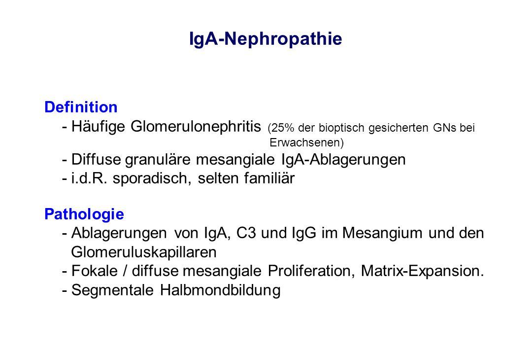 IgA-Nephropathie