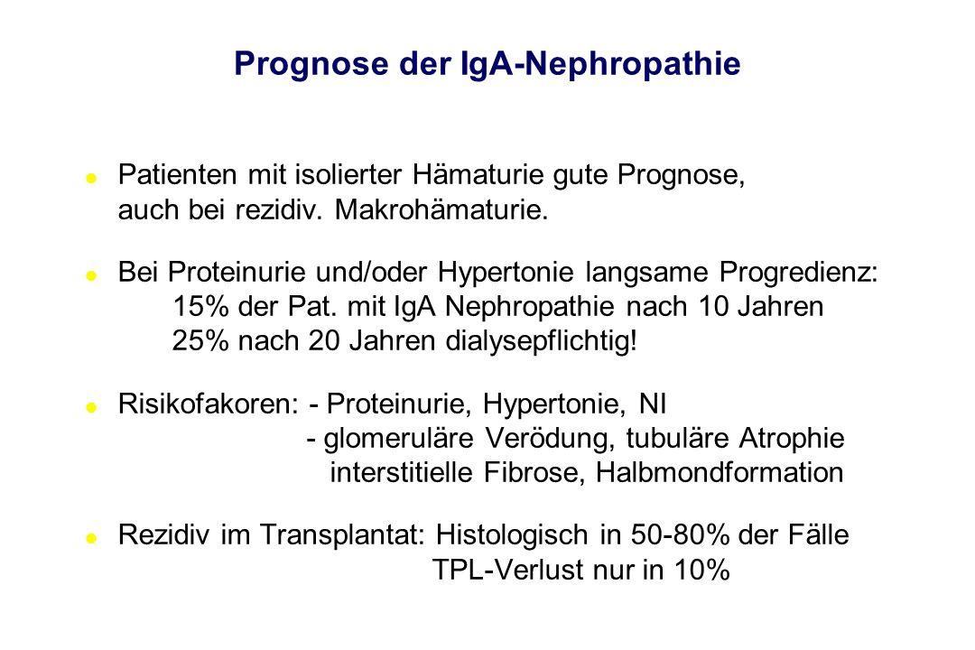 Prognose der IgA-Nephropathie