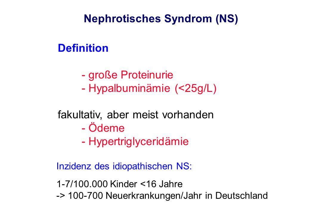 Nephrotisches Syndrom (NS)