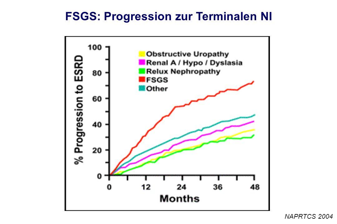 FSGS: Progression zur Terminalen NI