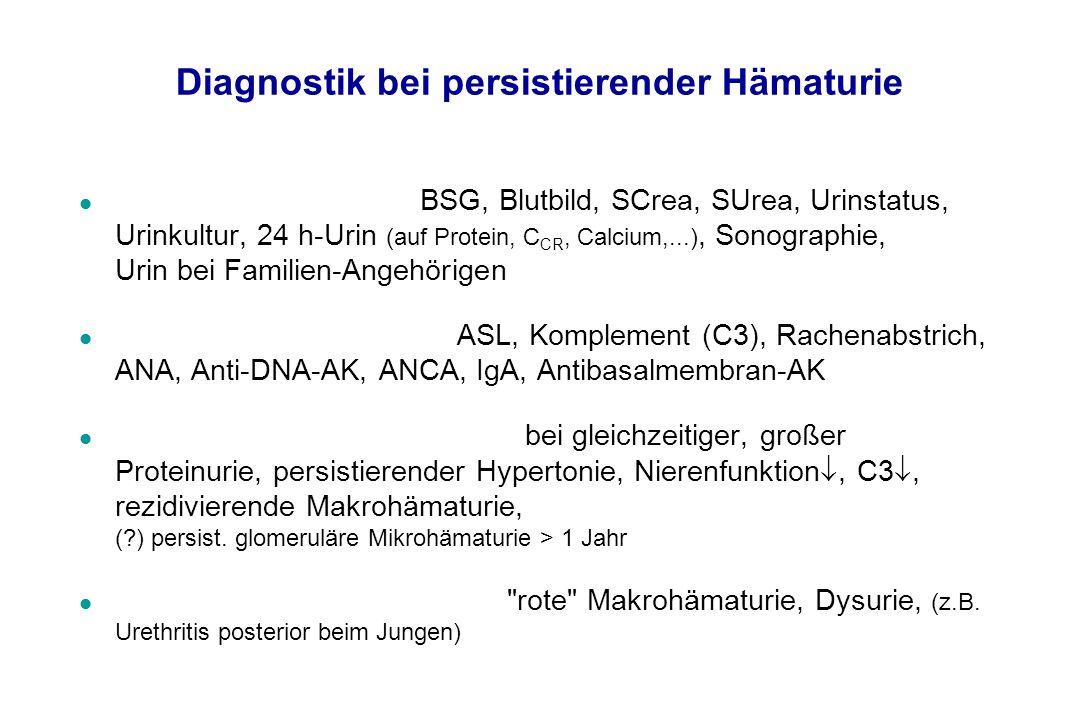 Diagnostik bei persistierender Hämaturie