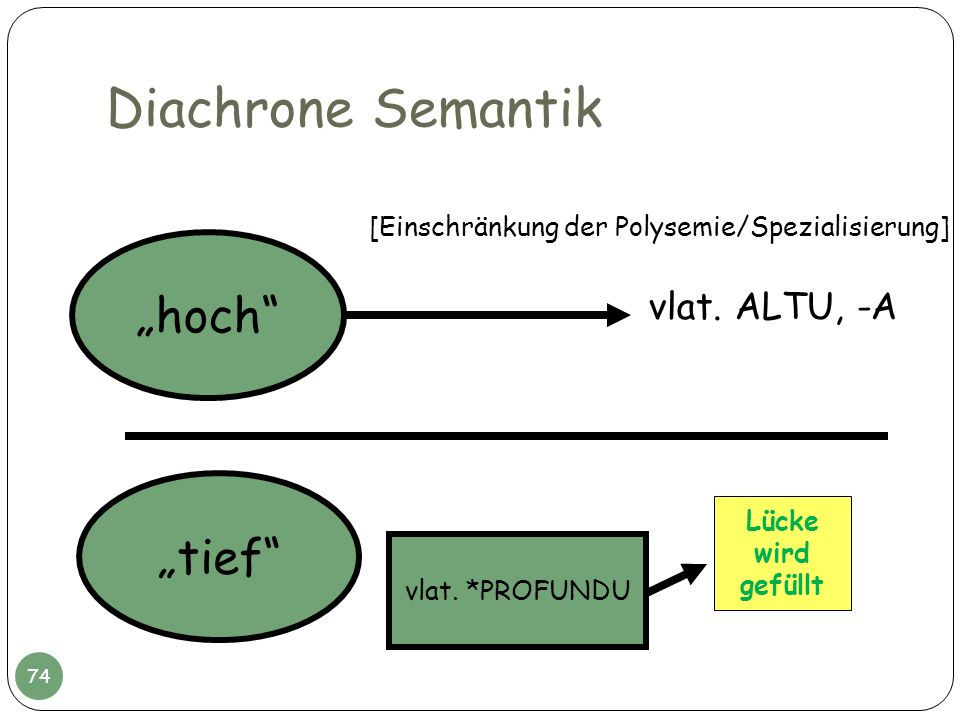 "Diachrone Semantik ""hoch ""tief vlat. ALTU, -A"