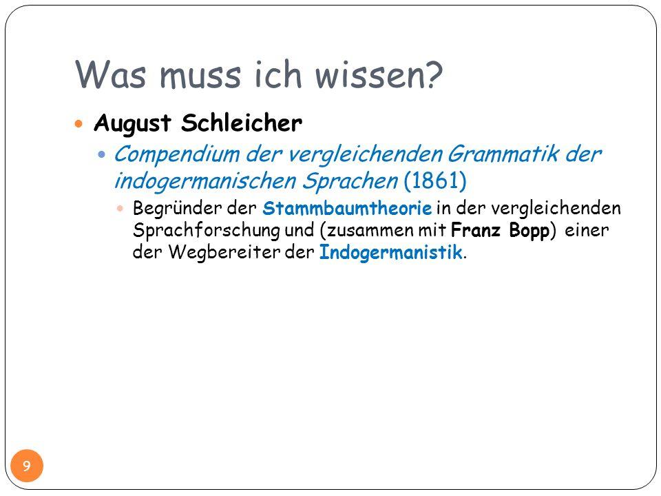 Was muss ich wissen August Schleicher