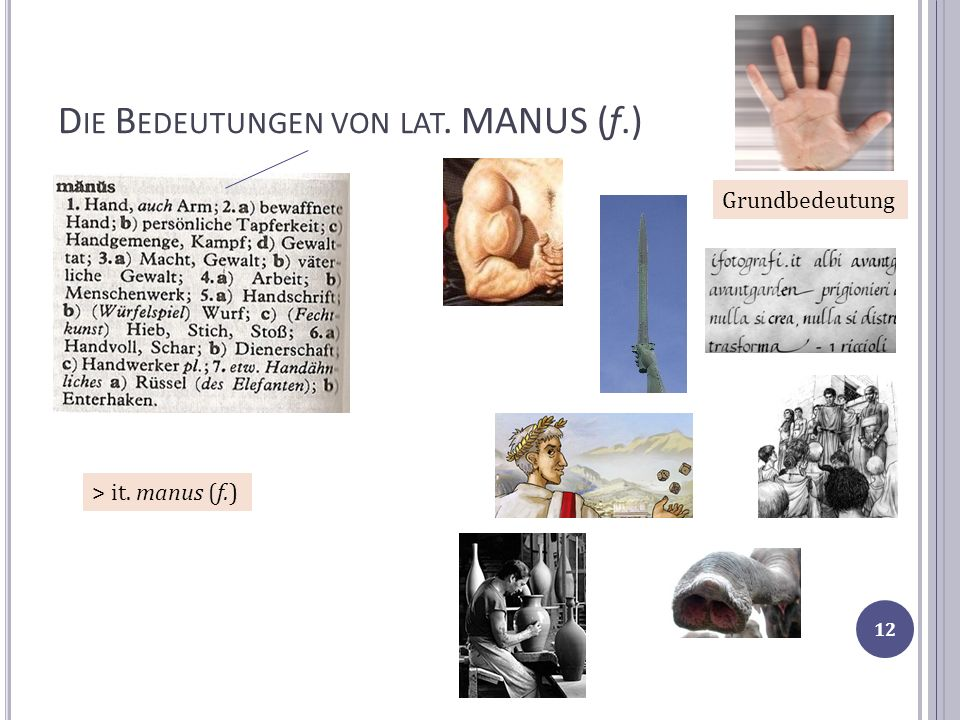 Die Bedeutungen von lat. MANUS (f.)
