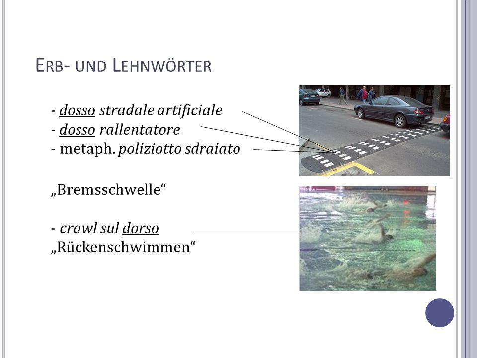 Erb- und Lehnwörter - dosso stradale artificiale - dosso rallentatore