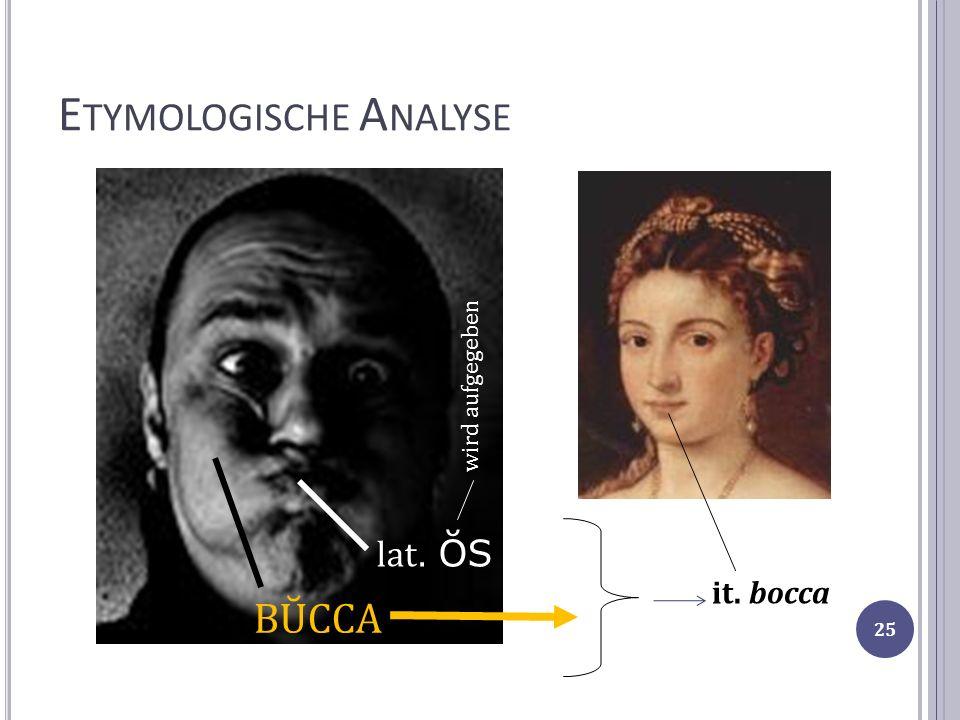 Etymologische Analyse
