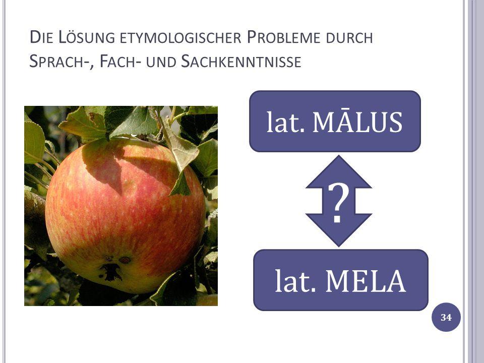Die Lösung etymologischer Probleme durch Sprach-, Fach- und Sachkenntnisse
