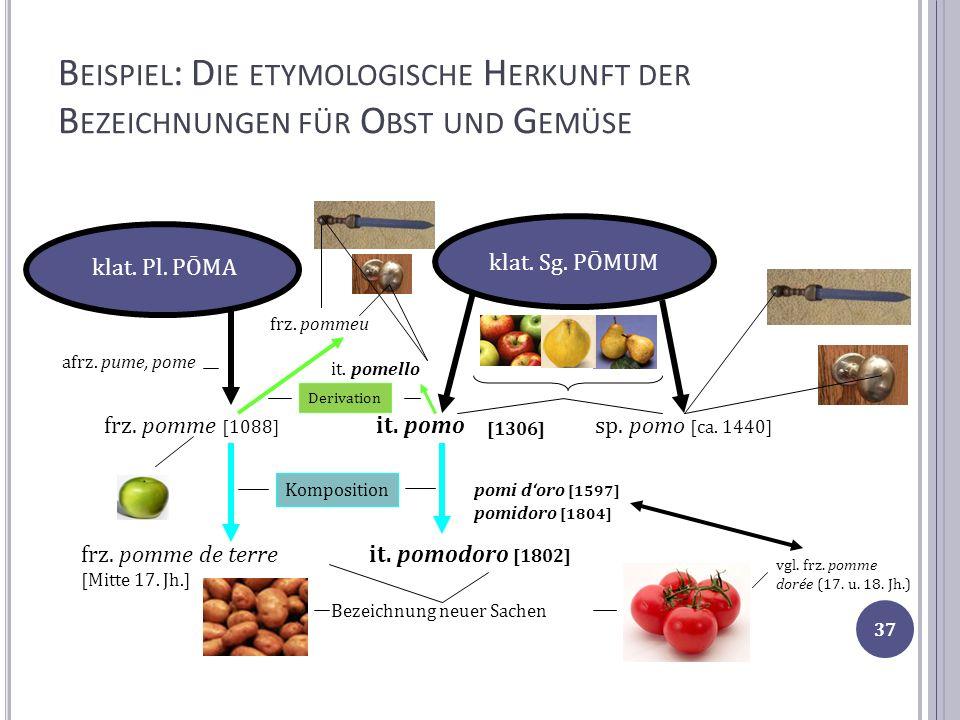 Beispiel: Die etymologische Herkunft der Bezeichnungen für Obst und Gemüse