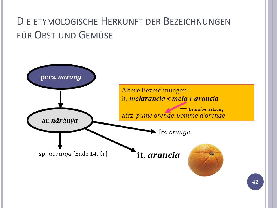 Die etymologische Herkunft der Bezeichnungen für Obst und Gemüse