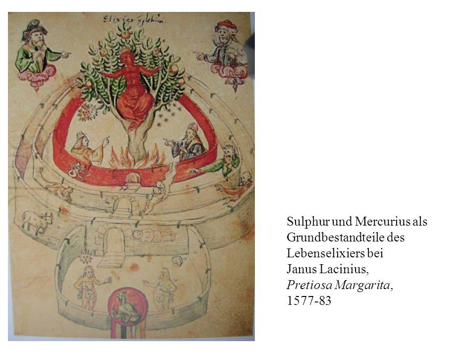 Sulphur und Mercurius als Grundbestandteile des Lebenselixiers bei Janus Lacinius, Pretiosa Margarita, 1577-83