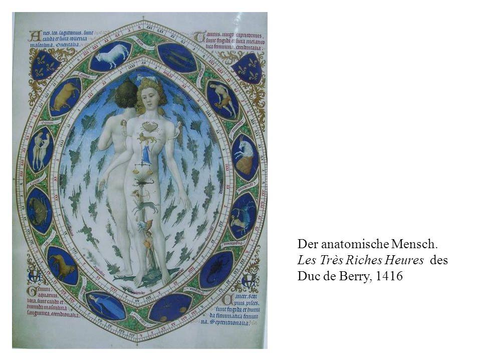 Der anatomische Mensch. Les Très Riches Heures des Duc de Berry, 1416