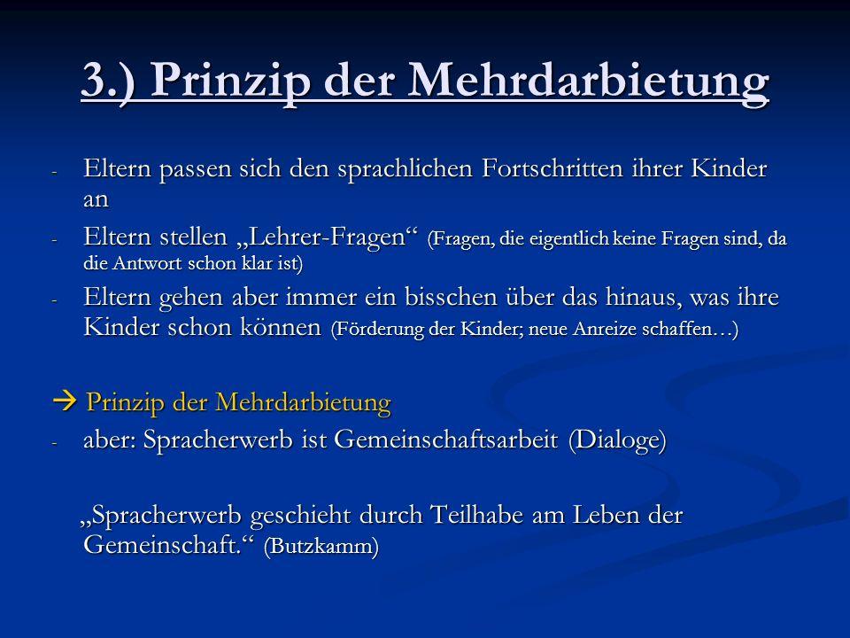 3.) Prinzip der Mehrdarbietung