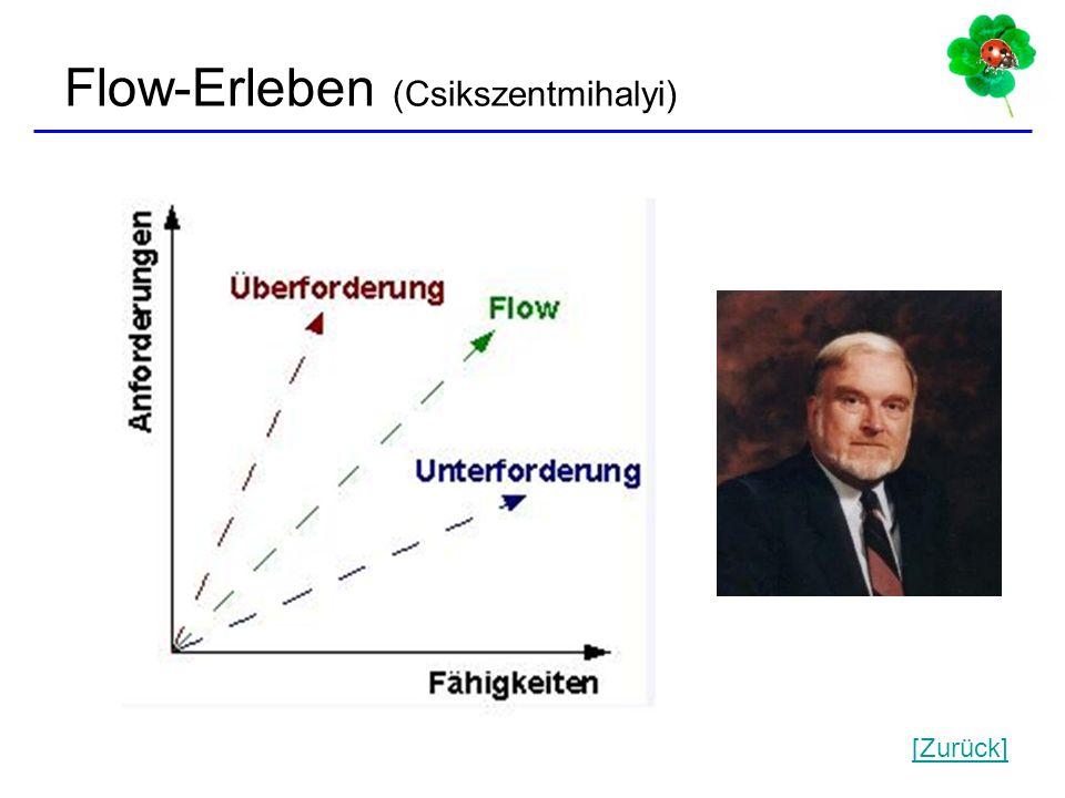 Flow-Erleben (Csikszentmihalyi)
