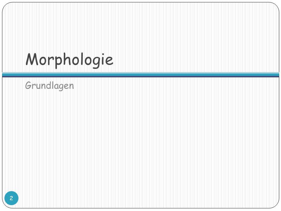 Morphologie Grundlagen