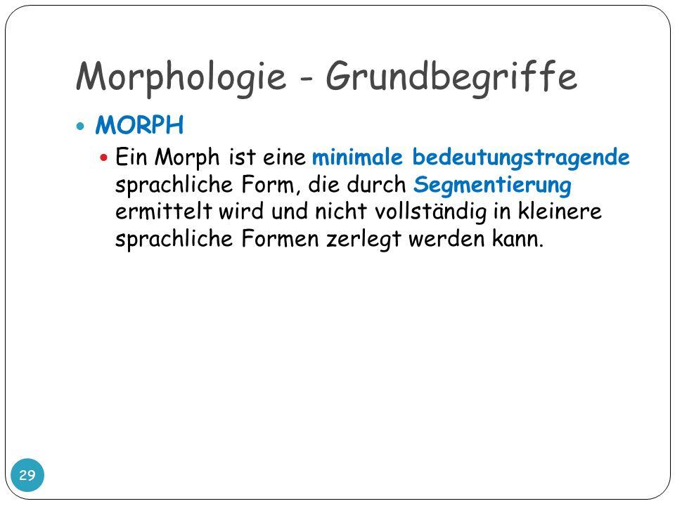Morphologie - Grundbegriffe