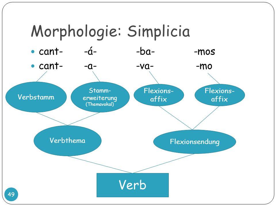 Morphologie: Simplicia