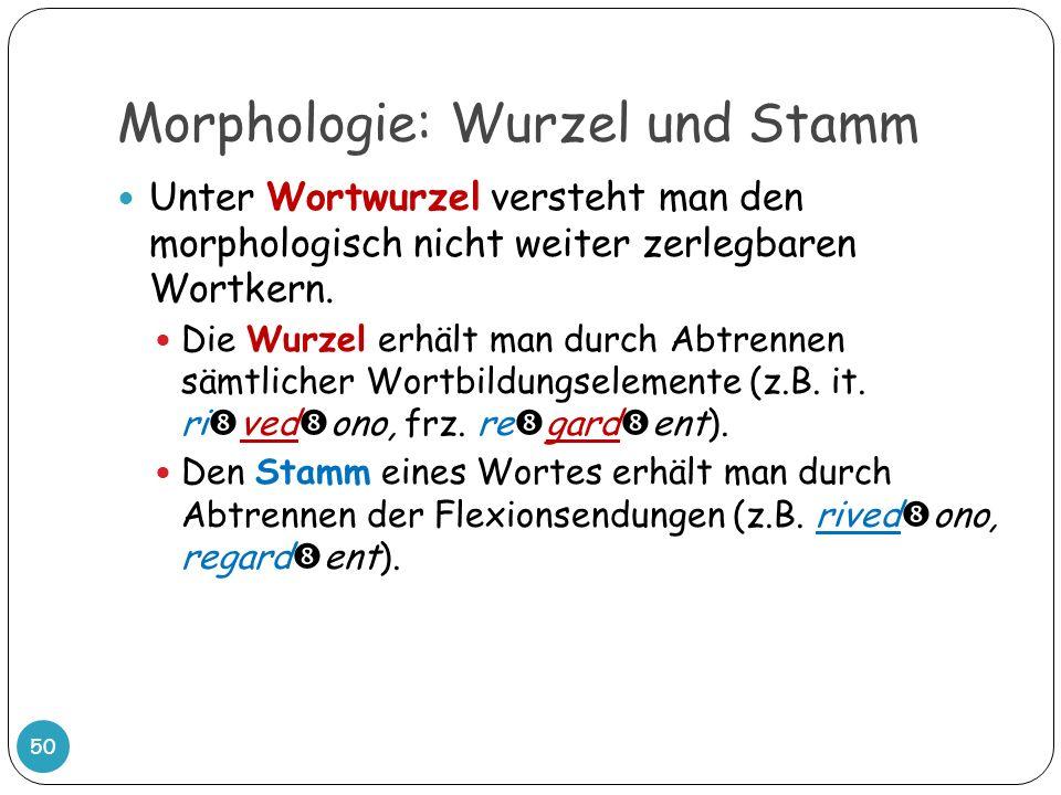 Morphologie: Wurzel und Stamm