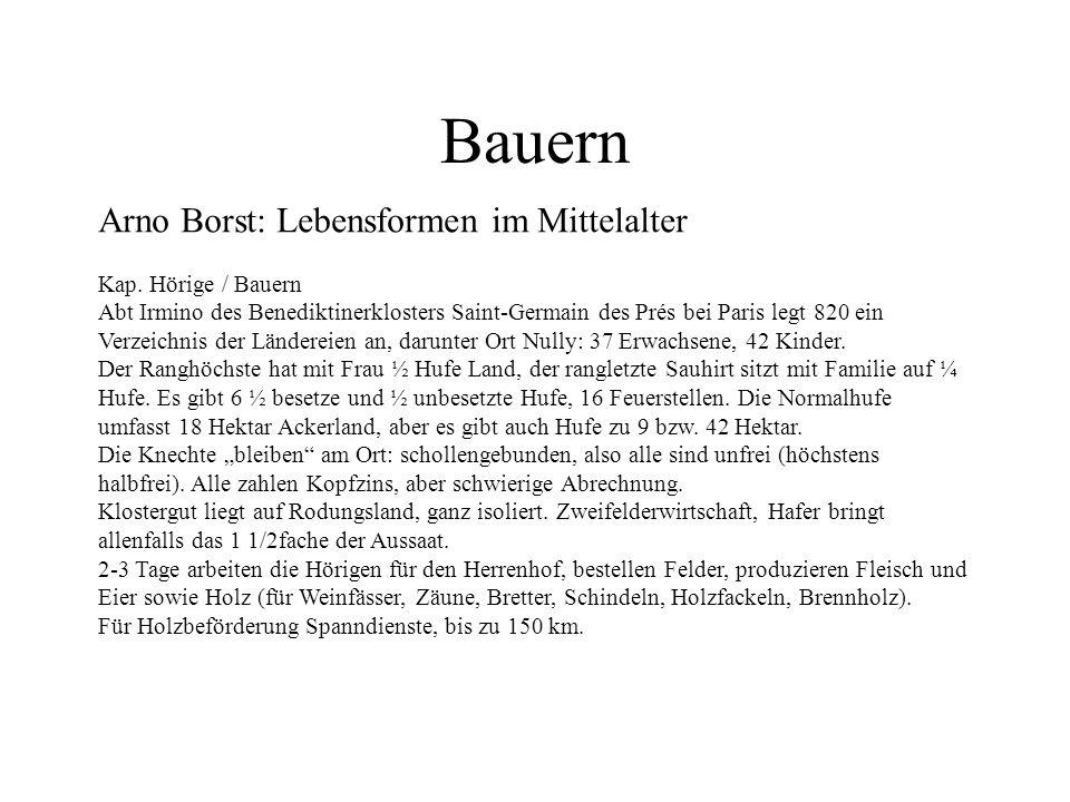 Bauern Arno Borst: Lebensformen im Mittelalter Kap. Hörige / Bauern