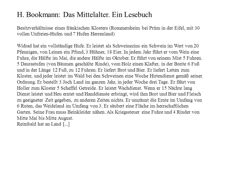 H. Bookmann: Das Mittelalter. Ein Lesebuch