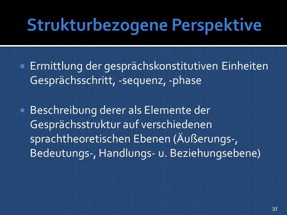 Strukturbezogene Perspektive