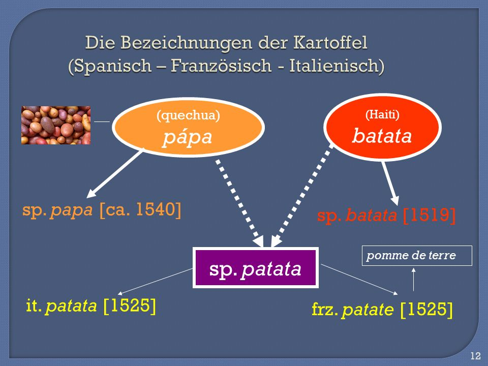 Die Bezeichnungen der Kartoffel (Spanisch – Französisch - Italienisch)