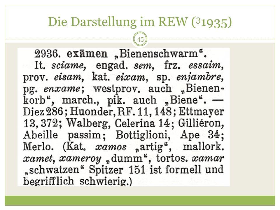 Die Darstellung im REW (31935)