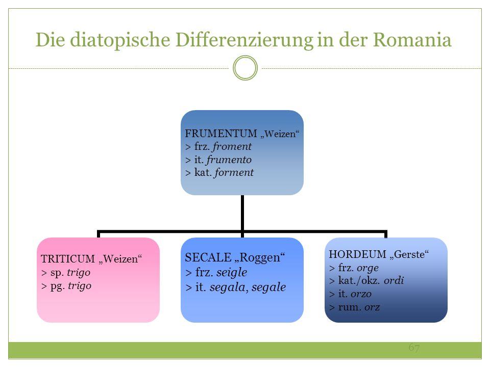 Die diatopische Differenzierung in der Romania