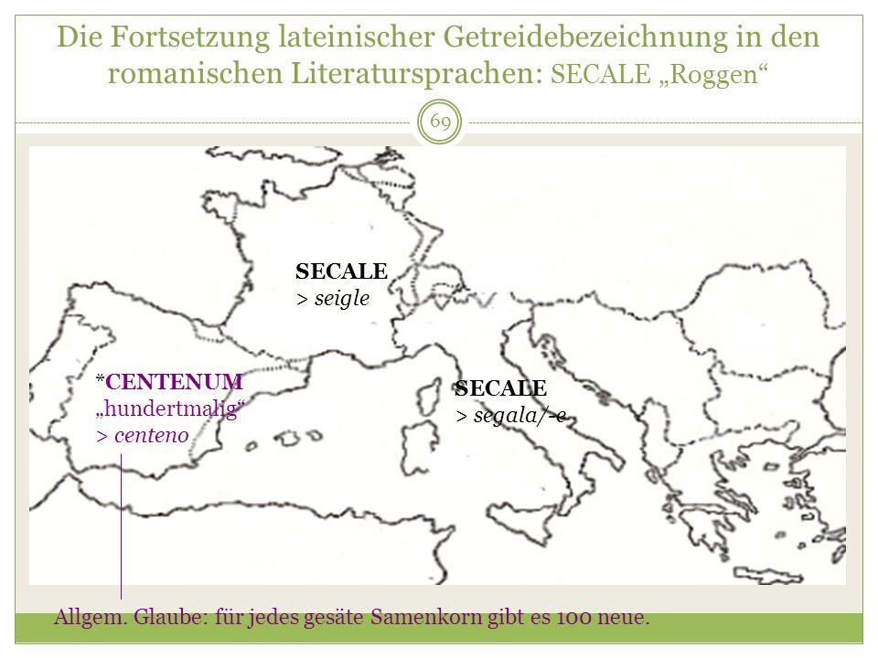 """Die Fortsetzung lateinischer Getreidebezeichnung in den romanischen Literatursprachen: SECALE """"Roggen"""