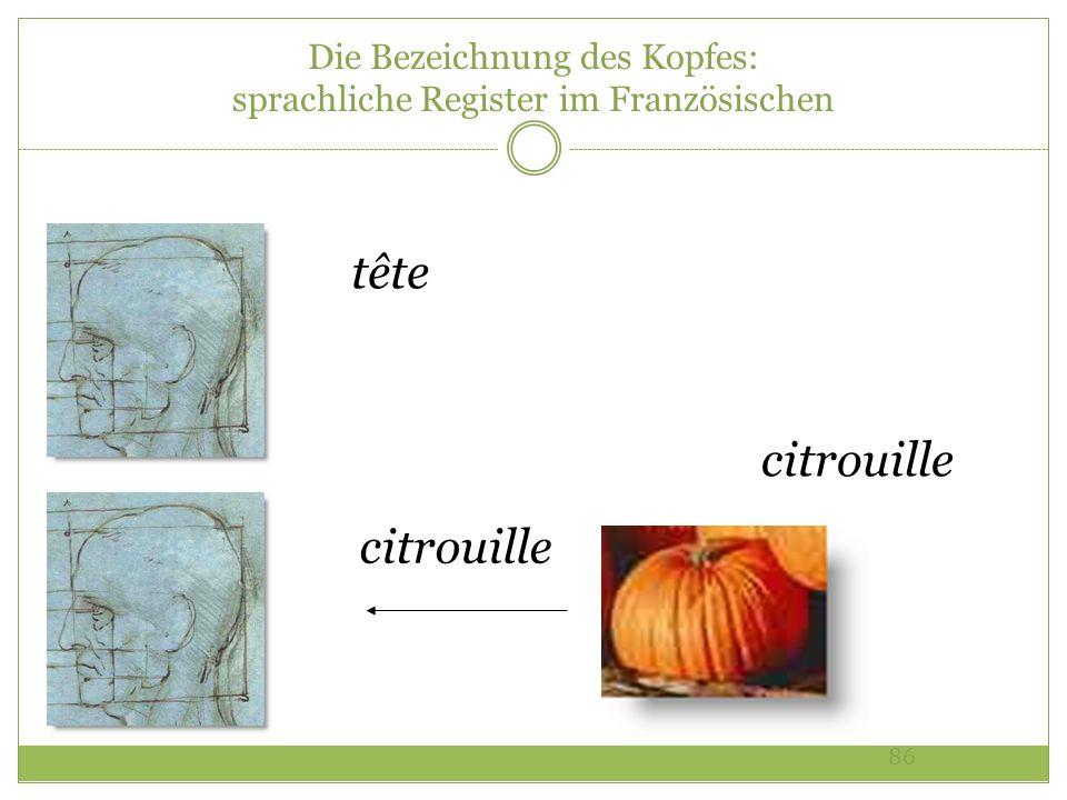 Die Bezeichnung des Kopfes: sprachliche Register im Französischen