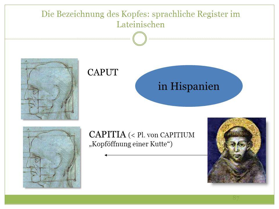 Die Bezeichnung des Kopfes: sprachliche Register im Lateinischen