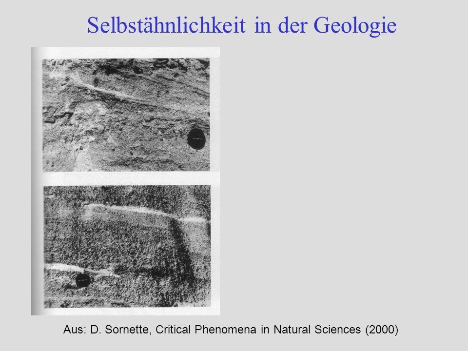 Selbstähnlichkeit in der Geologie