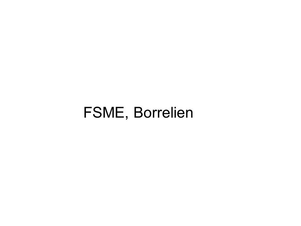 FSME, Borrelien