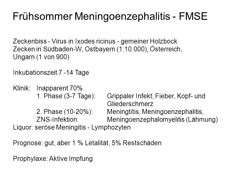 Frühsommer Meningoenzephalitis - FMSE