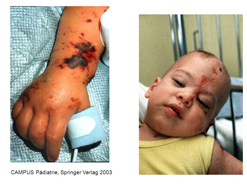 CAMPUS Pädiatrie, Springer Verlag 2003