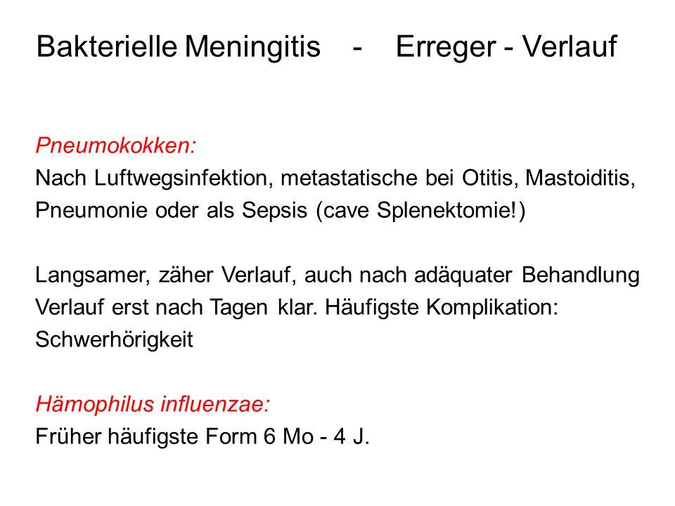 Bakterielle Meningitis - Erreger - Verlauf